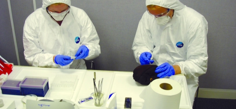 Available wildlife forensic tests in the UK